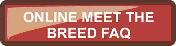 Meet the breed online FAQ